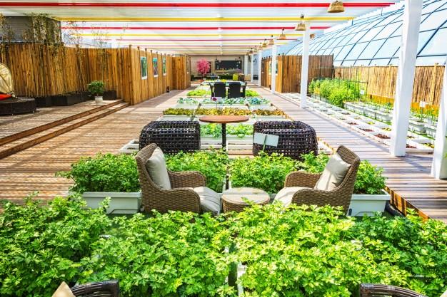 Cómo convertir un espacio al aire libre en un sitio funcional? | Directorio  de Bienes Raíces